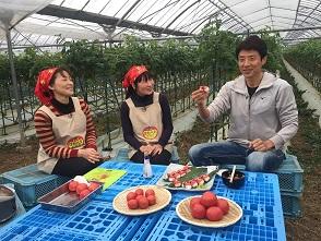 【くいしん坊!万才】熊本・鹿児島編⑤「塩トマト」 のイメージ